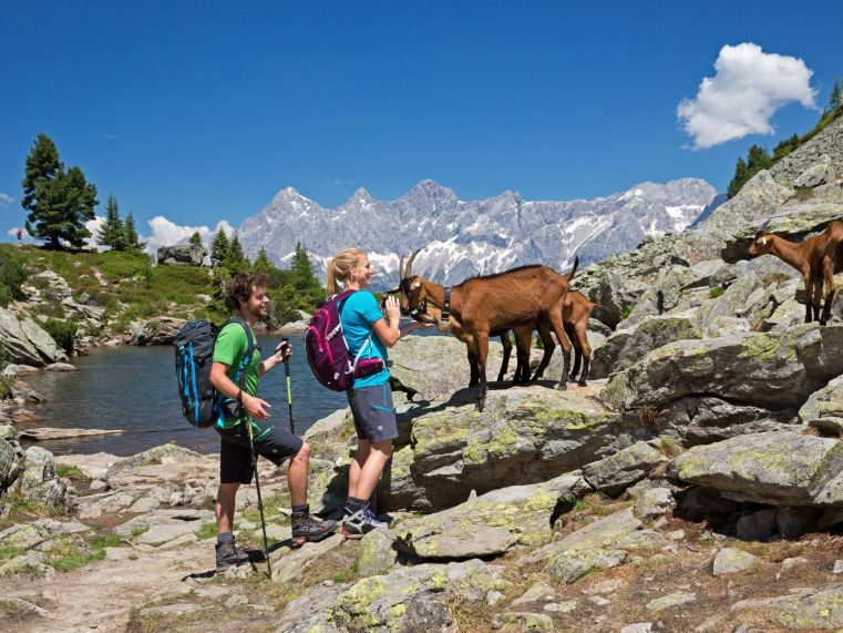 Hiking Holidays, Summer Holidays and Running in Schladming-Dachstein